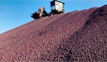 """A Vale, gigante na mineração, lança o """"briquete verde"""", produto capaz de reduzir a emissão de gases do efeito estufa, podendo ser revolucionário para as siderúrgicas"""